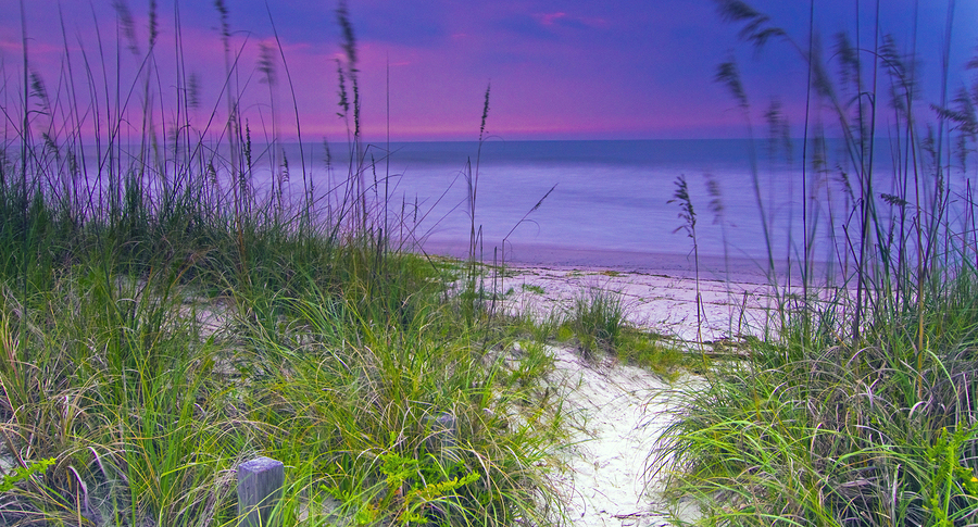 2019 Fall Pinnacle Society Conference Site - Amelia Island